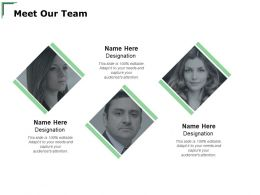 Meet Our Team Introduction A123 Ppt Powerpoint Presentation Model Ideas