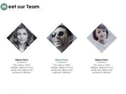 Meet Our Team Introduction Communication C327 Ppt Powerpoint Presentation Outline Designs