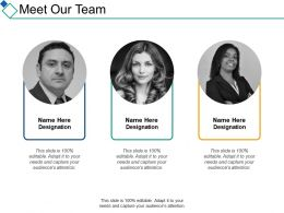 Meet Our Team Introduction Ppt Summary Designs Download
