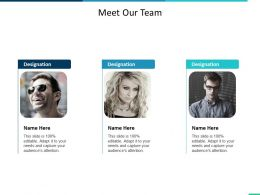 Meet Our Team Introduction Ppt Summary Infographic Template