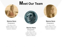 Meet Our Team Introduction Teamwork Ppt Powerpoint Presentation Icon Show