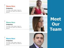 Meet Our Team Planning Ppt Professional Guidelines