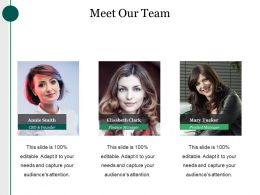 Meet Our Team Powerpoint Themes