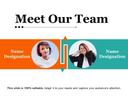 Meet Our Team Ppt Examples