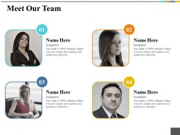 Meet Our Team Ppt Outline Model