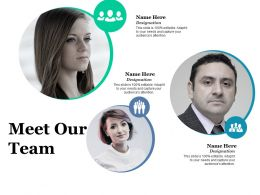 Meet Our Team Ppt Professional Designs Download