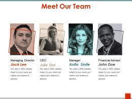 Meet Our Team Ppt Sample Download