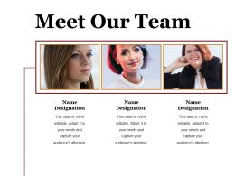 Meet Our Team Ppt Summary Visuals