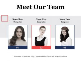 Meet Our Team Ppt Visual Aids Model