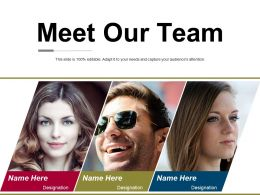 Meet Our Team Ppt Visual Aids Summary
