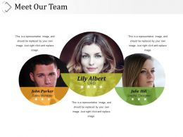 Meet Our Team Presentation Powerpoint Templates