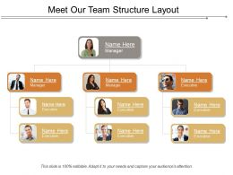 Meet Our Team Structure Layout