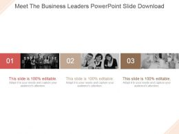 Meet The Business Leaders Powerpoint Slide Download