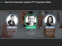 Meet The Corporate Leaders Ppt Examples Slides