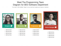 Meet The Programming Team Diagram For SEO Software Department Infographic Template