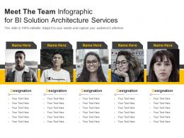 Meet The Team For BI Solution Architecture Service Infographic Template