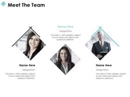 Meet The Team Introduction C1021 Ppt Powerpoint Presentation File Samples