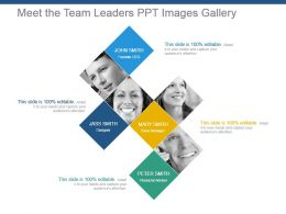 Meet The Team Leaders Ppt Images Gallery