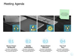 Meeting Agenda Identify Stakeholders Ppt Powerpoint Presentation File