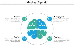 Meeting Agenda Ppt Powerpoint Presentation Icon Themes Cpb