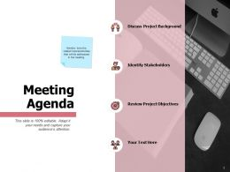 Meeting Agenda Project Objectives Ppt Powerpoint Presentation Styles Show