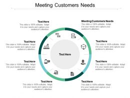 Meeting Customers Needs Ppt Powerpoint Presentation Styles Professional Cpb
