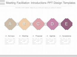 Meeting Facilitation Introductions Ppt Design Templates