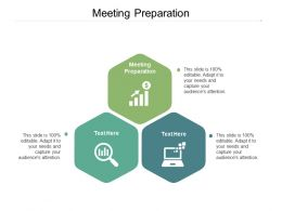 Meeting Preparation Ppt Powerpoint Presentation Styles Graphics Cpb