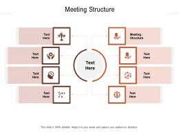 Meeting Structure Ppt Powerpoint Presentation Slides Infographic Template Cpb