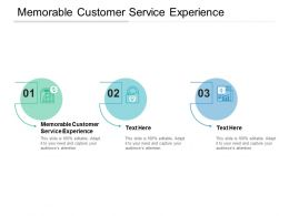 Memorable Customer Service Experience Ppt Powerpoint Presentation Summary Cpb