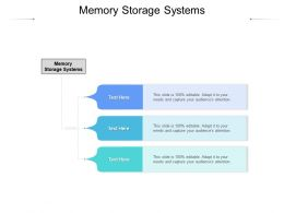 Memory Storage Systems Ppt Powerpoint Presentation Inspiration Templates Cpb