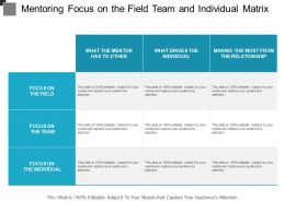Mentoring Focus On The Field Team And Individual Matrix