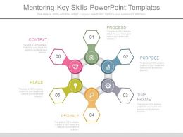 Mentoring Key Skills Powerpoint Templates