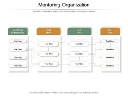 Mentoring Organization Ppt Powerpoint Presentation Slides Backgrounds Cpb
