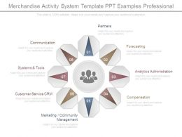 Merchandise Activity System Template Ppt Examples Professional