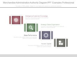 Merchandise Administration Authority Diagram Ppt Examples Professional