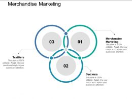 Merchandise Marketing Ppt Powerpoint Presentation Styles Information Cpb