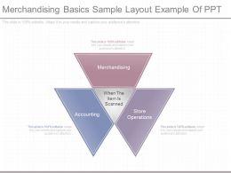 Merchandising Basics Sample Layout Example Of Ppt