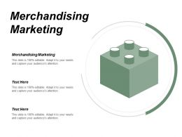 Merchandising Marketing Ppt Powerpoint Presentation Infographic Template Format Ideas Cpb