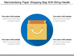 Merchandising Paper Shopping Bag With String Handle