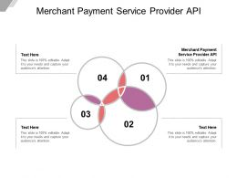 Merchant Payment Service Provider API Ppt Powerpoint Presentation Icon Vector Cpb