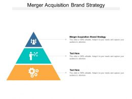Merger Acquisition Brand Strategy Ppt Powerpoint Presentation Pictures Cpb