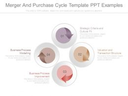 Merger And Purchase Cycle Template Ppt Examples