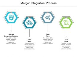 Merger Integration Process Ppt Powerpoint Presentation Layouts Model Cpb