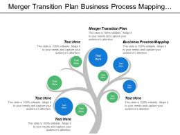 Merger Transition Plan Business Process Mapping Six Sigma Cpb