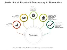 Merits Of Audit Report With Transparency To Shareholders