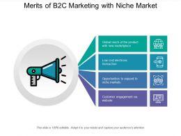 merits_of_b2c_marketing_with_niche_market_Slide01