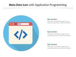 Meta Data Icon With Application Programming