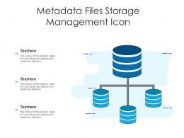 Metadata Files Storage Management Icon