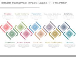 Metadata Management Template Sample Ppt Presentation